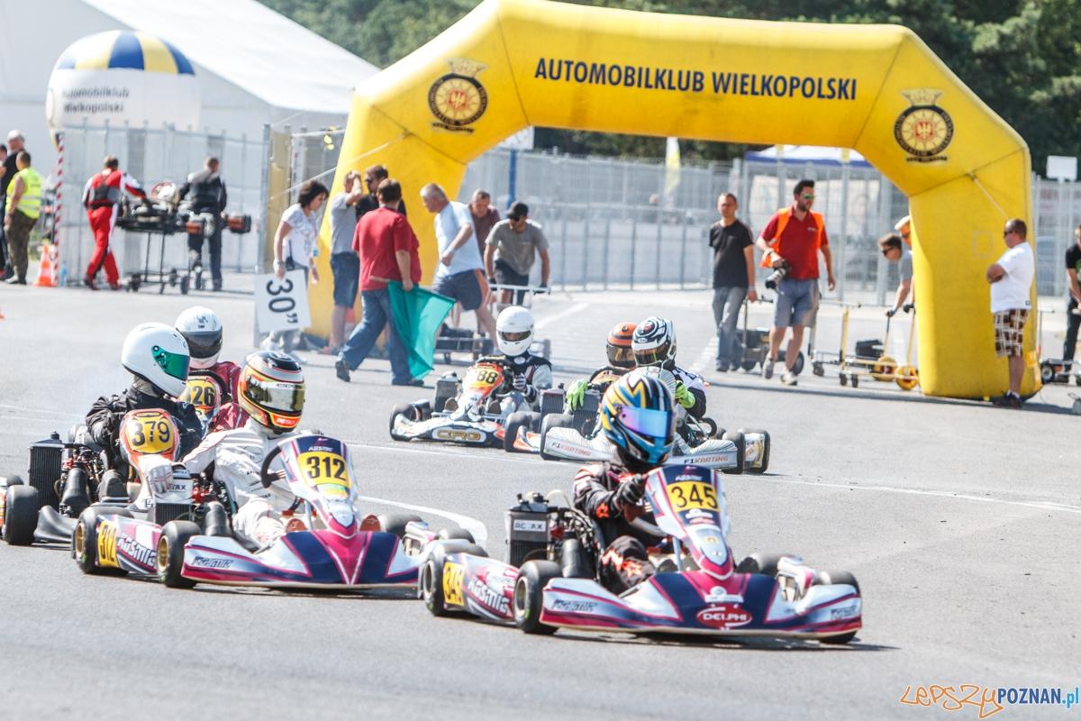 Zawody kartingowe Rotax Max Challenge Poland - Tor Poznań - 1-2  Foto: LepszyPOZNAN.pl / Paweł Rychter