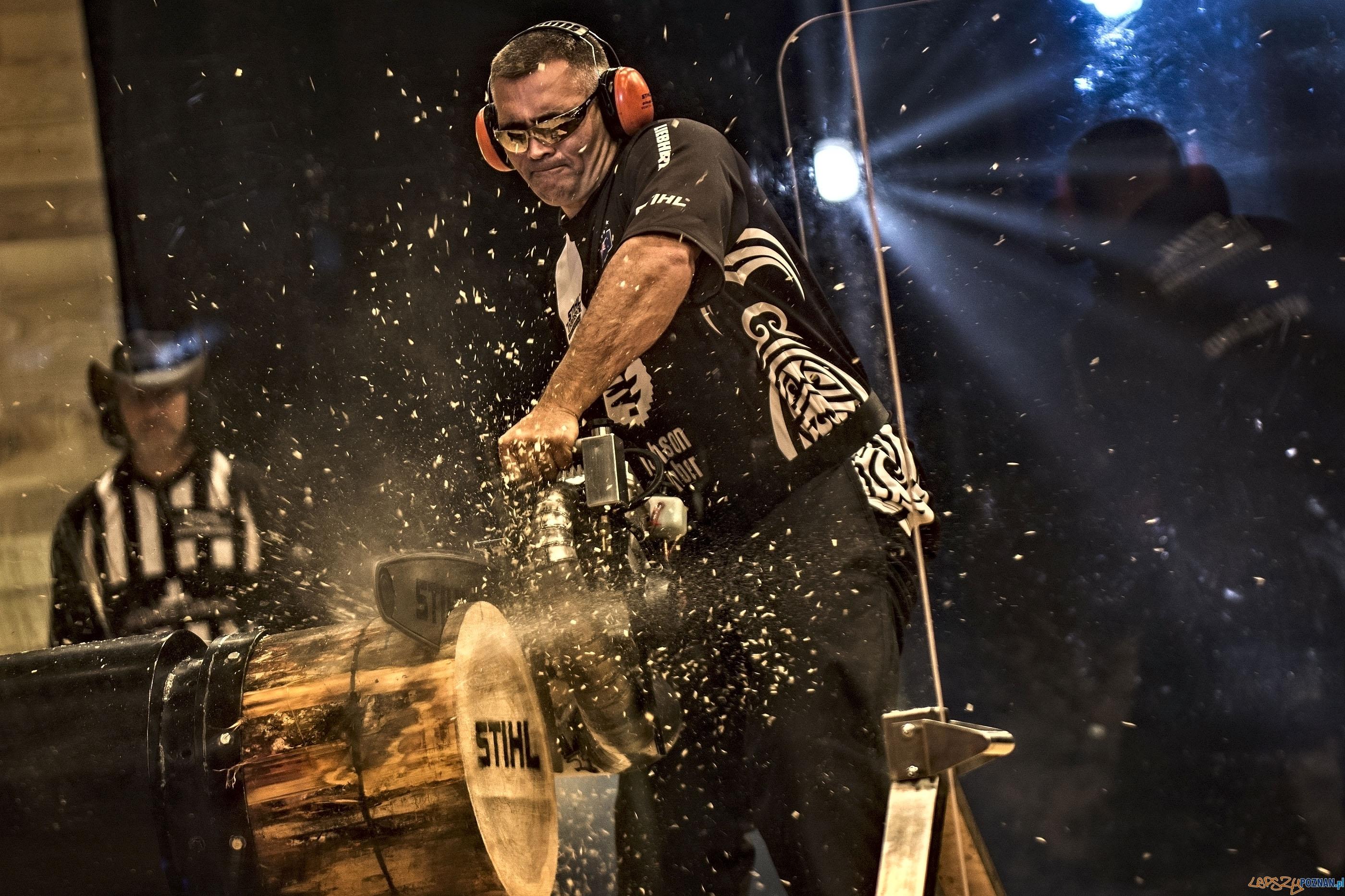 Jason Wynyard reprezentant Nowej Zealand w finale Stihl Timbersports World Championships 15 listopada 2014  Foto: Sebastian Marko for Limex Images / TimberSports