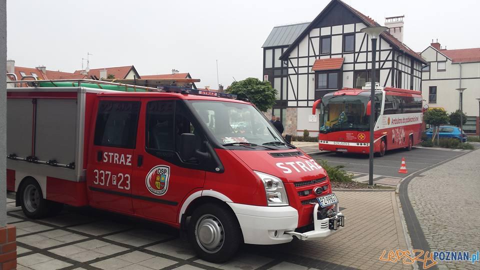 Sobotnia zbiórka krwi  Foto: OSP Puszczykowo