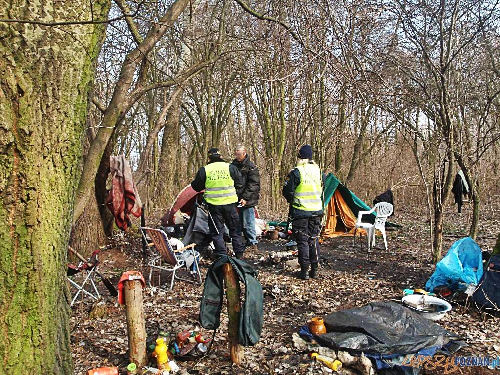 Skrajnie wycieńczony bezdomny  Foto: Straż Miejska w Poznaniu