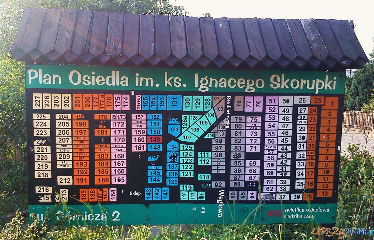 Plan Osiedla Skorupki  Foto: wikipedia