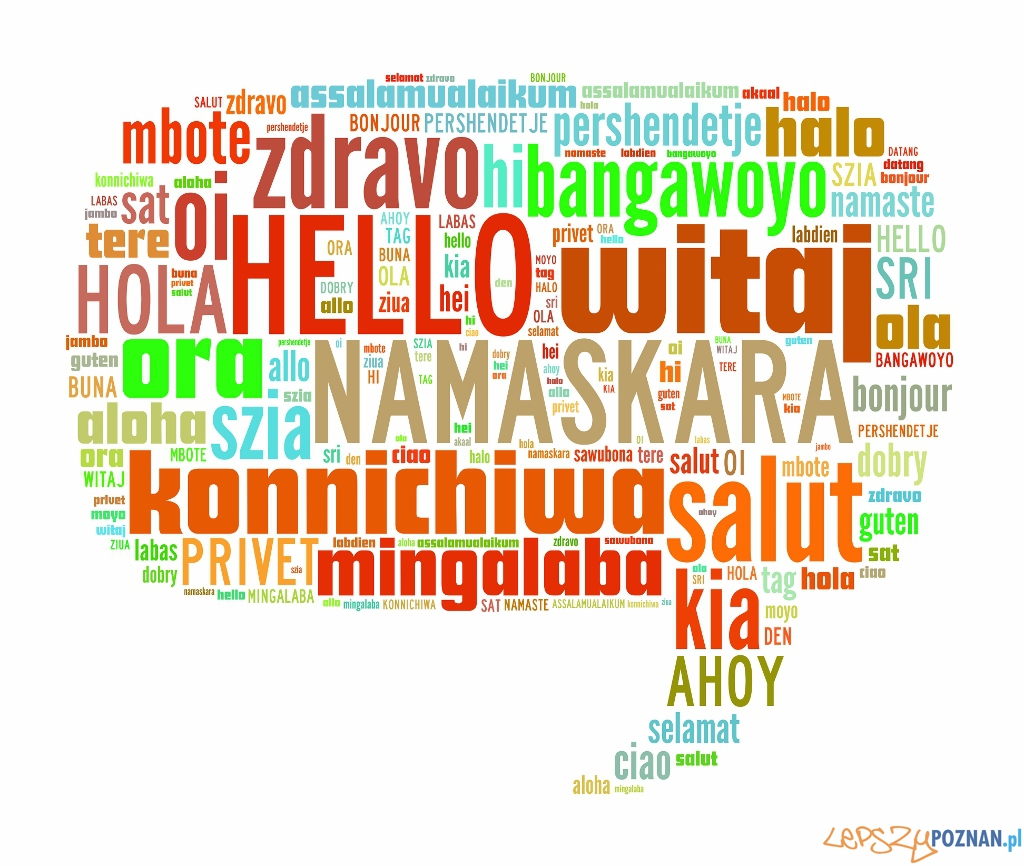 Nauka języków obcych  Foto: materiały prasowe