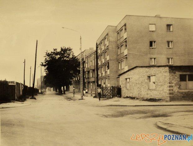 Ul. Dolna Wilda - 1968  Foto: Z archiwum Miejskiego Konserwatora Zabytków, autor: Czesław Czub