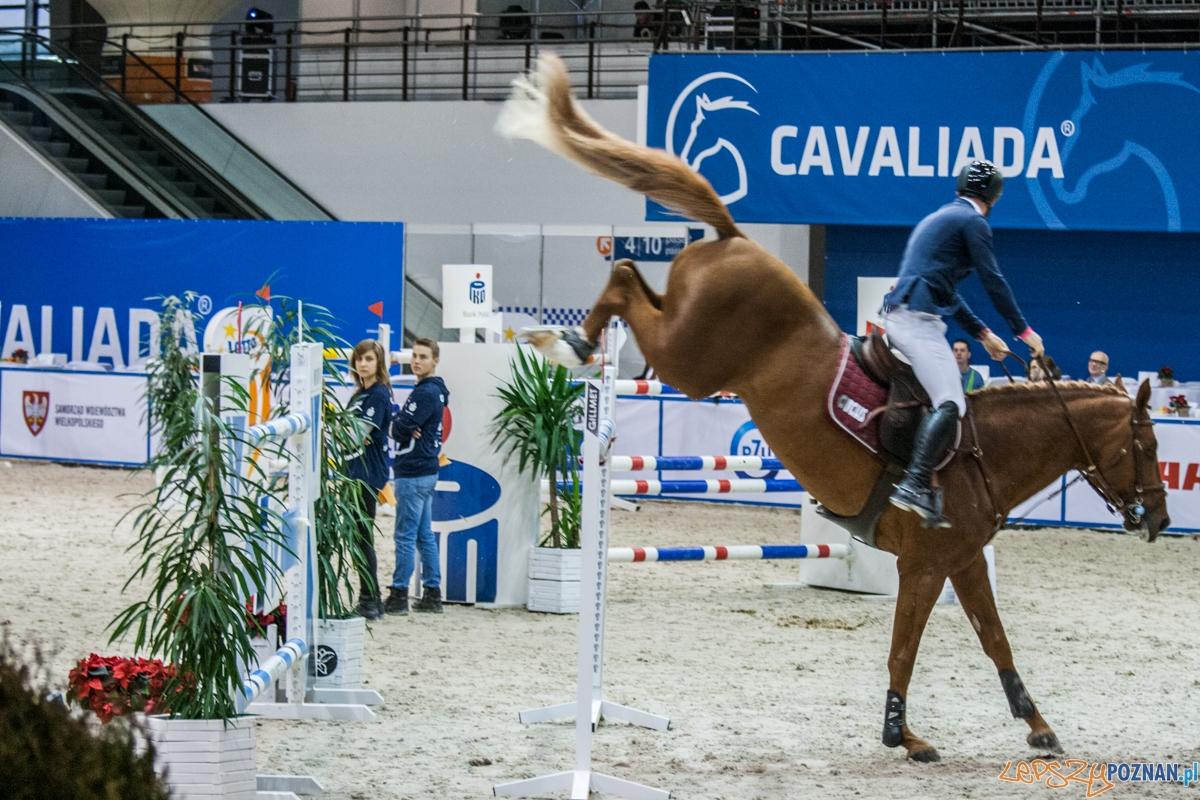 Cavaliada 2015 (12.12.2015)  Foto: © lepszyPOZNAN.pl / Karolina Kiraga