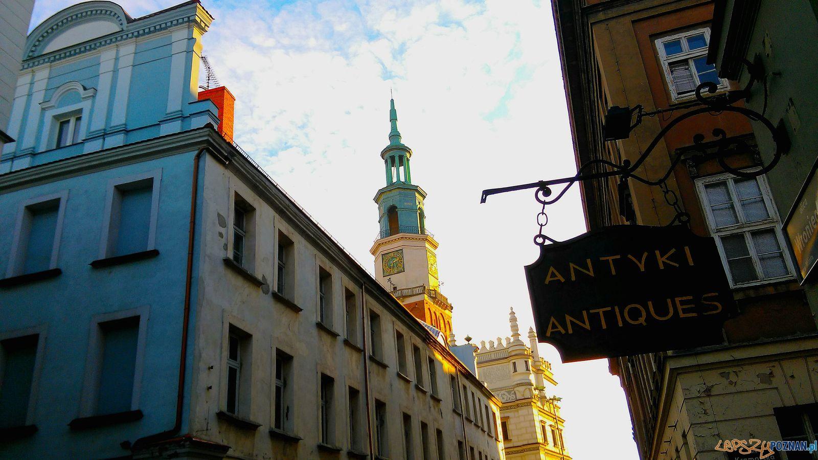 Wieża ratuszowa  Foto: Tomasz Dworek