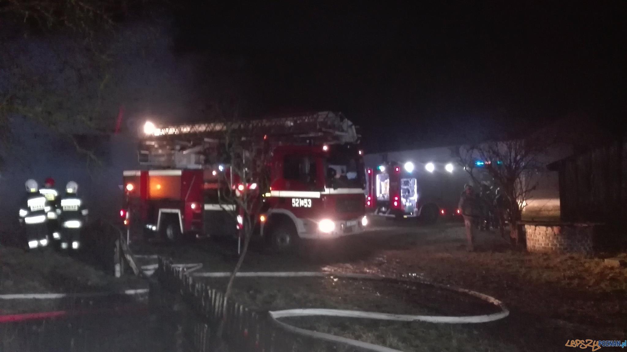 Poranny pożar domu  Foto: OSP Skoki / T. Przykucki, K. Wontroba
