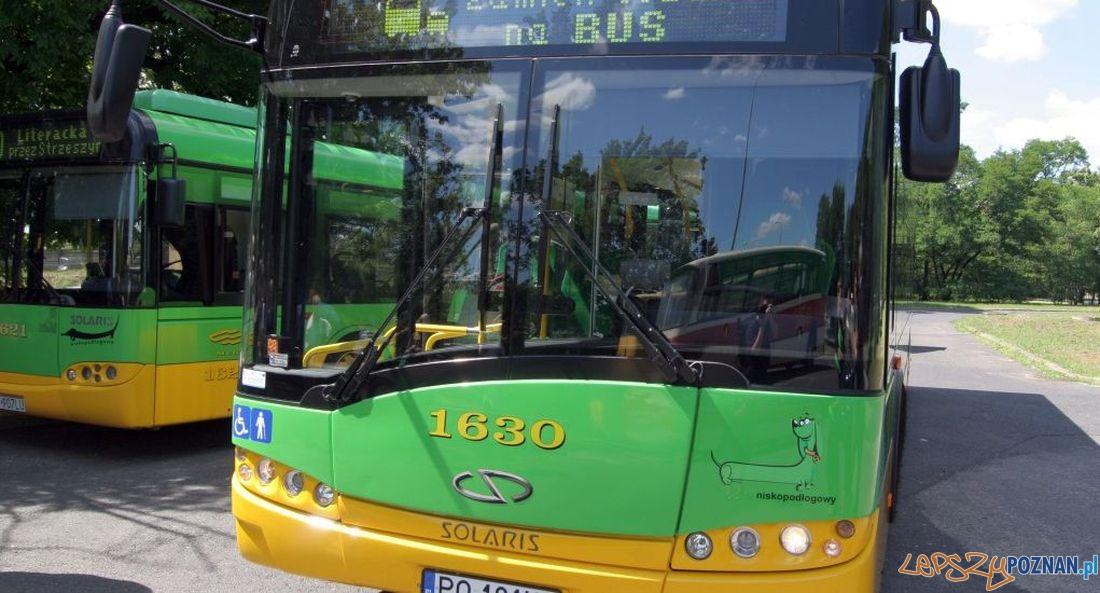 Autobus  Foto:
