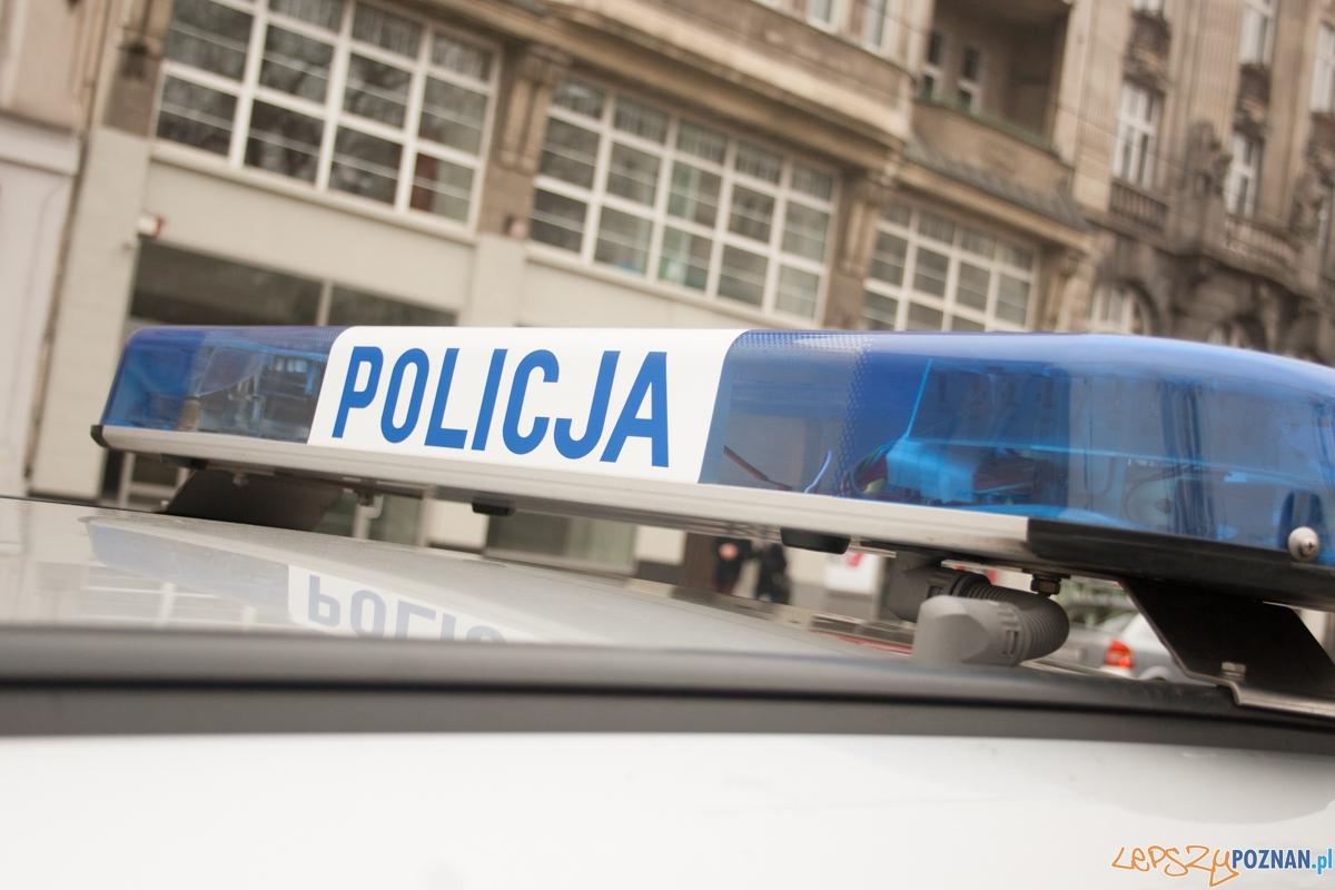 Policja / kogut  Foto: © Karolina Kiraga