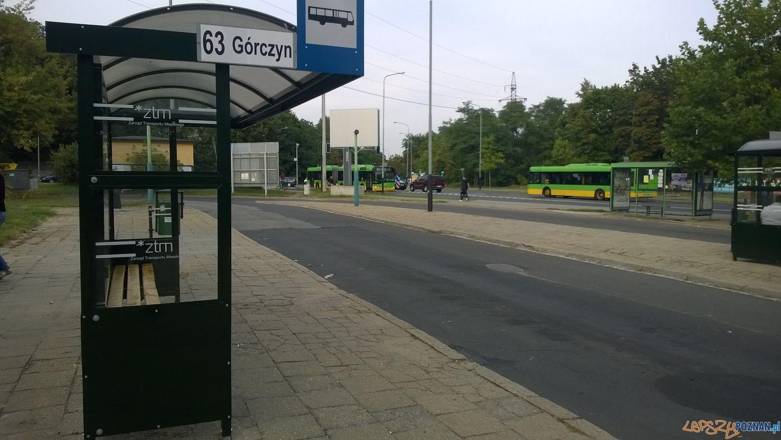Pętla autobusowa Garbary  Foto: Tomasz Dworek