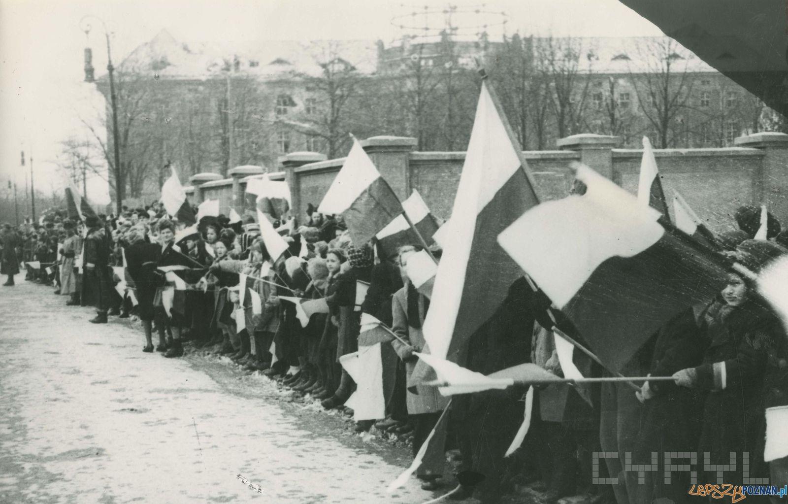 Poznaniacy podczas defilady na Walach Leszczyńskiego (dziś Al. Niepodległości) -  8.03.1945  Foto: Zbigniew Zielonacki / Cyryl
