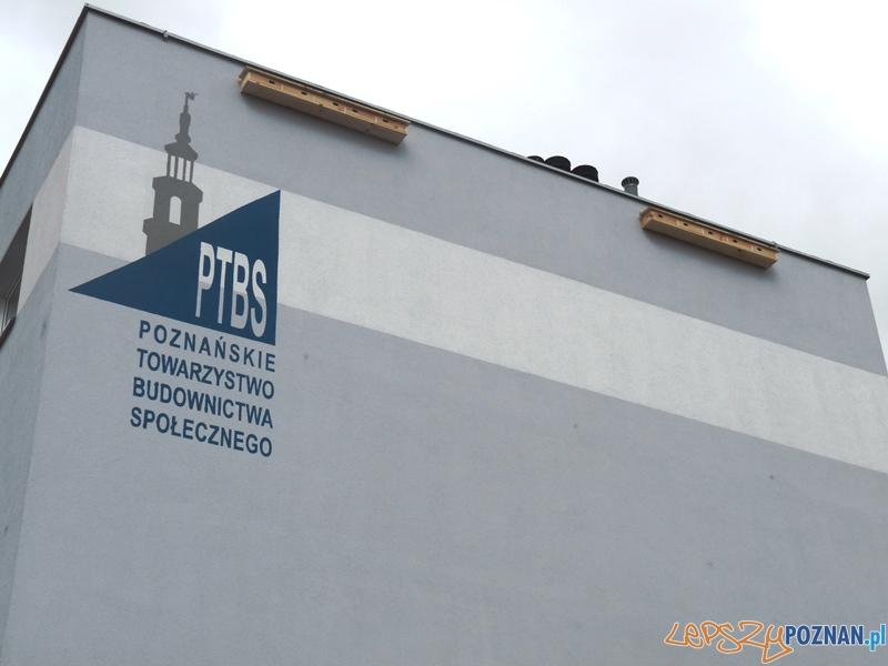 Budki lęgowe jerzyków na PTBS  Foto: UMP