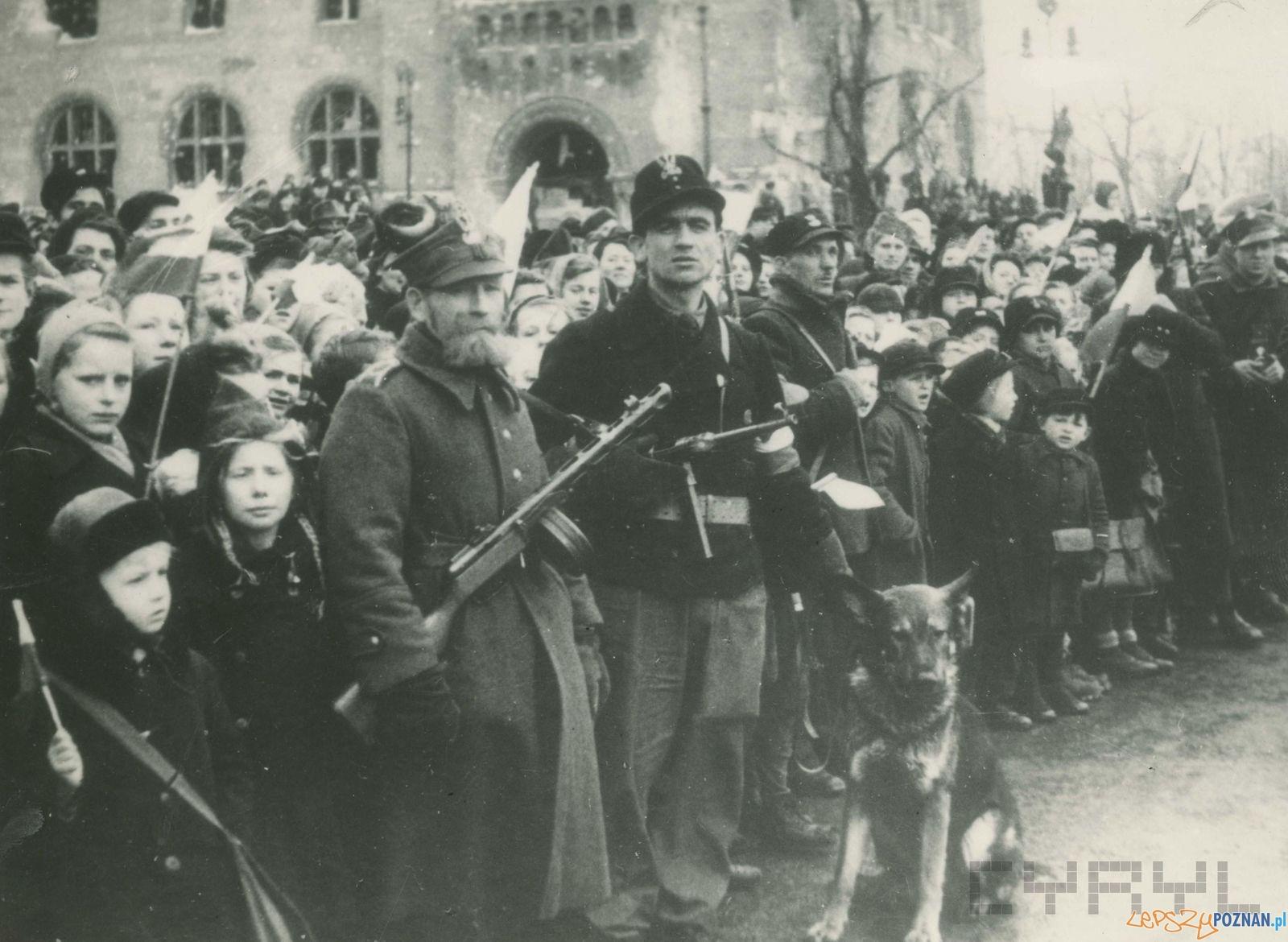 Poznaniacy przez Zamkiem podczas defilady po zakończeniu walk o Poznań - 8.03.1945  Foto: Zbigniew Zielonacki / Cyryl