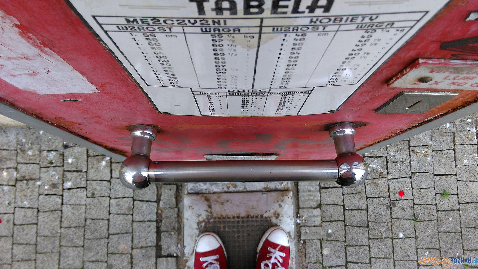 Czerwona waga z Al. Marcinkowskiego  (7)  Foto: Tomasz Dworek / ROSM