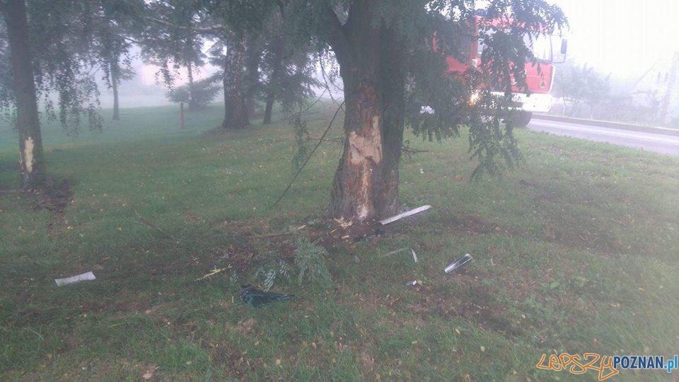 Wypadek we mgle  Foto: OSP Skoki