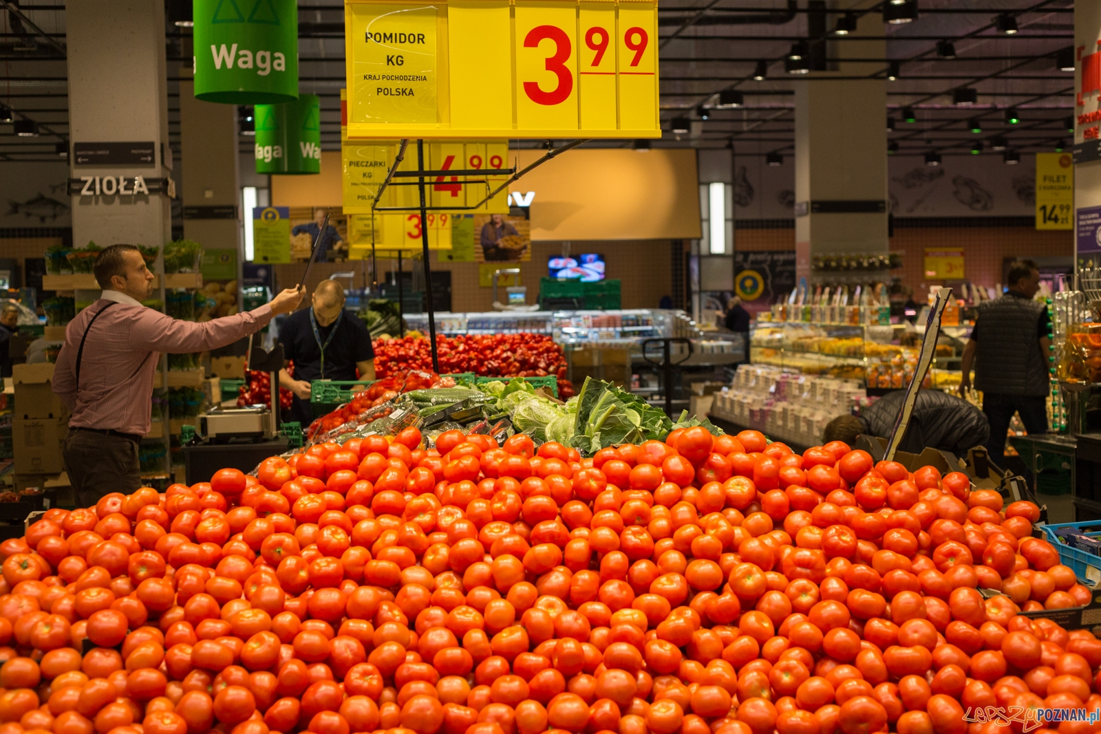 Pomidory, warzywa, stragan  Foto: lepszyPOZNAN.pl / Piotr Rychter