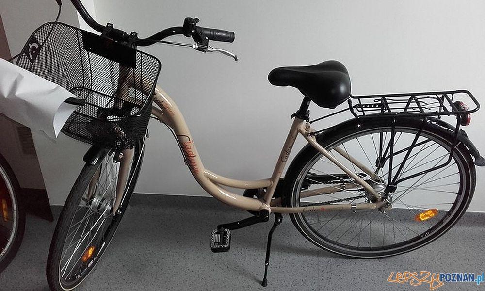 Skradziony rower  Foto: Biuro Prasowe Wielkopolskiej Policji