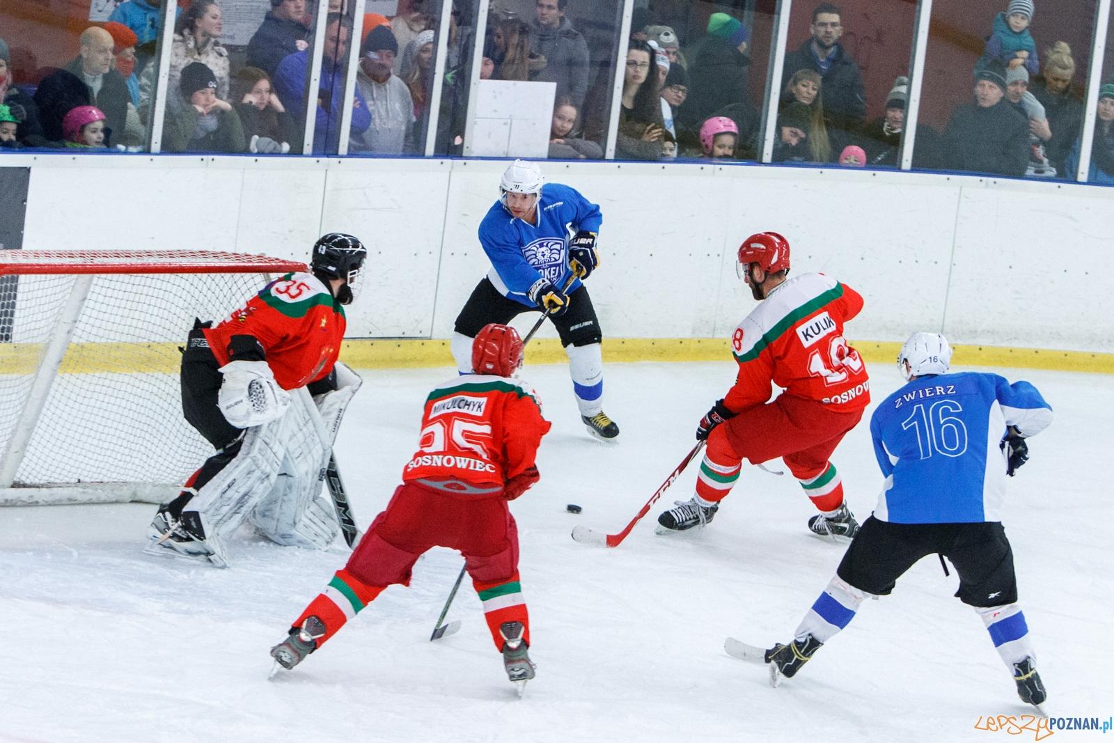 Hokej Poznań - Zagłębie Sosnowiec 2:13 - Poznań 12.02.2017 r  Foto: LepszyPOZNAN.pl / Paweł Rychter