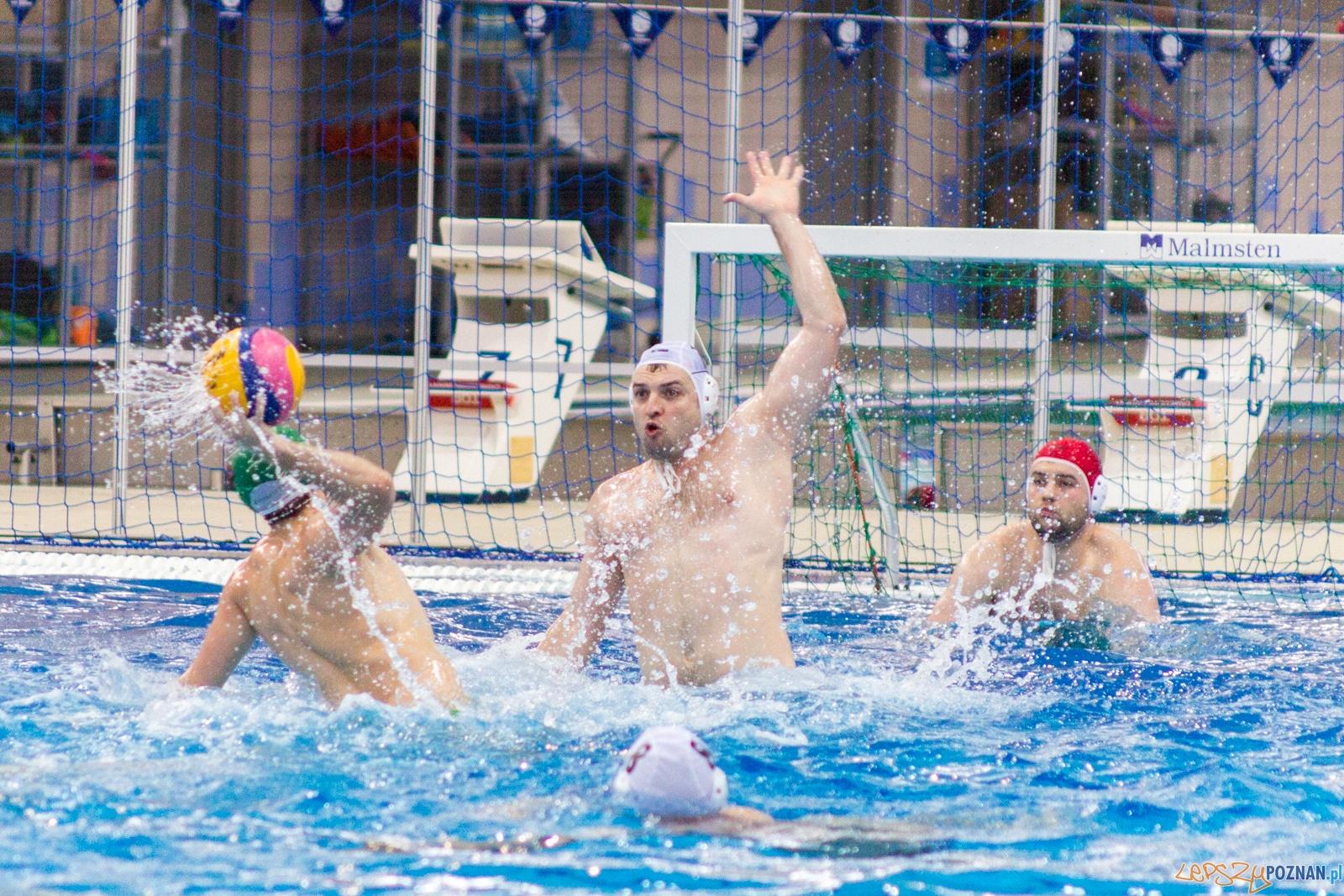 KS Waterpolo Poznań - Legia Warszawa  Foto: lepszyPOZNAN.pl / Ewelina Jaśkowiak