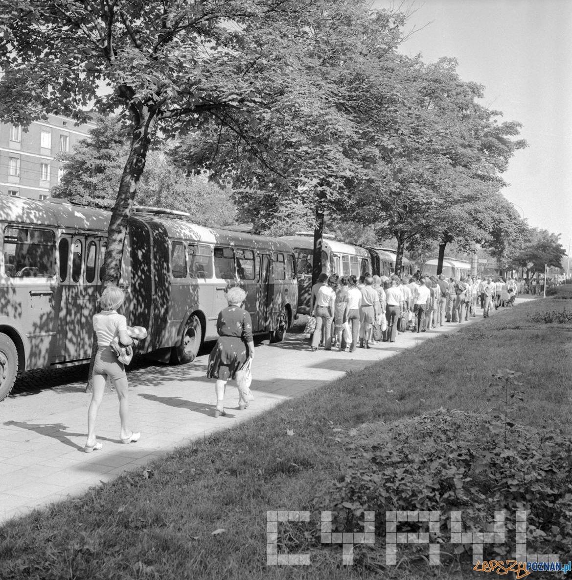 Autobusy przez pływalnią w karku Kasprowicza 10.08.1975  Foto: Stanisław Wiktor / Cyryl