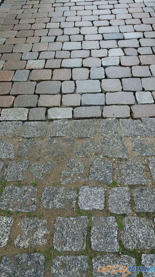 Zeszlifowana kostka na ulicy Woźnej  Foto: biuletyn.poznan.pl / Jan Gładysiak