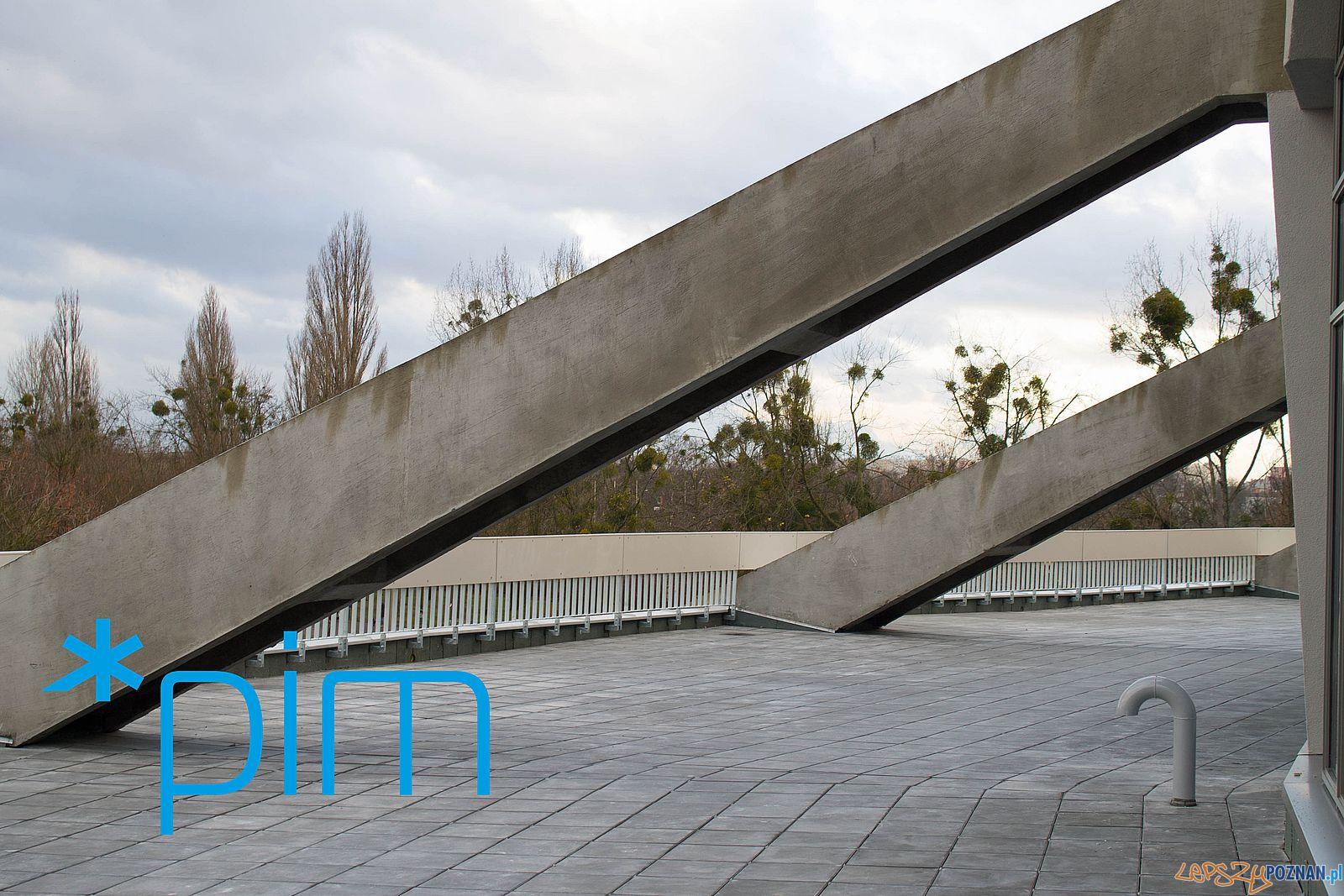 Modernizacja Areny (6)  Foto: PIM