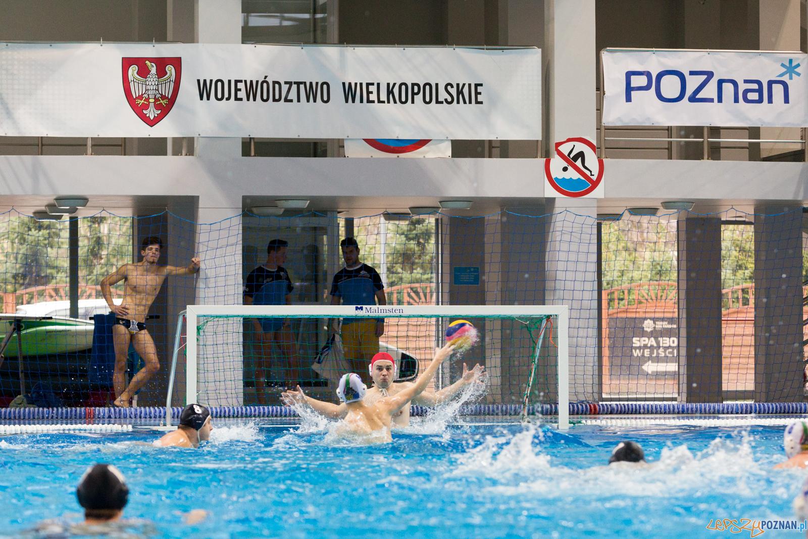 Malta Waterpolo Cup:  Alfa Gorzów - Waterpolo Team Wielkopolska  Foto: lepszyPOZNAN.pl/Piotr Rychter
