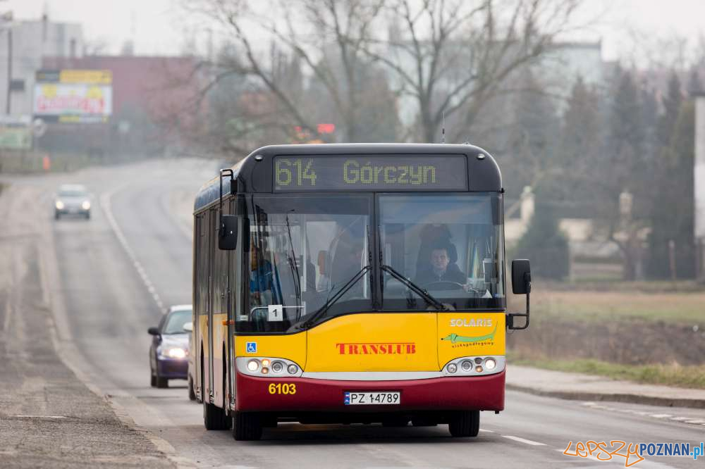 Autobus nr 614 -  Translub  Foto: ZTM