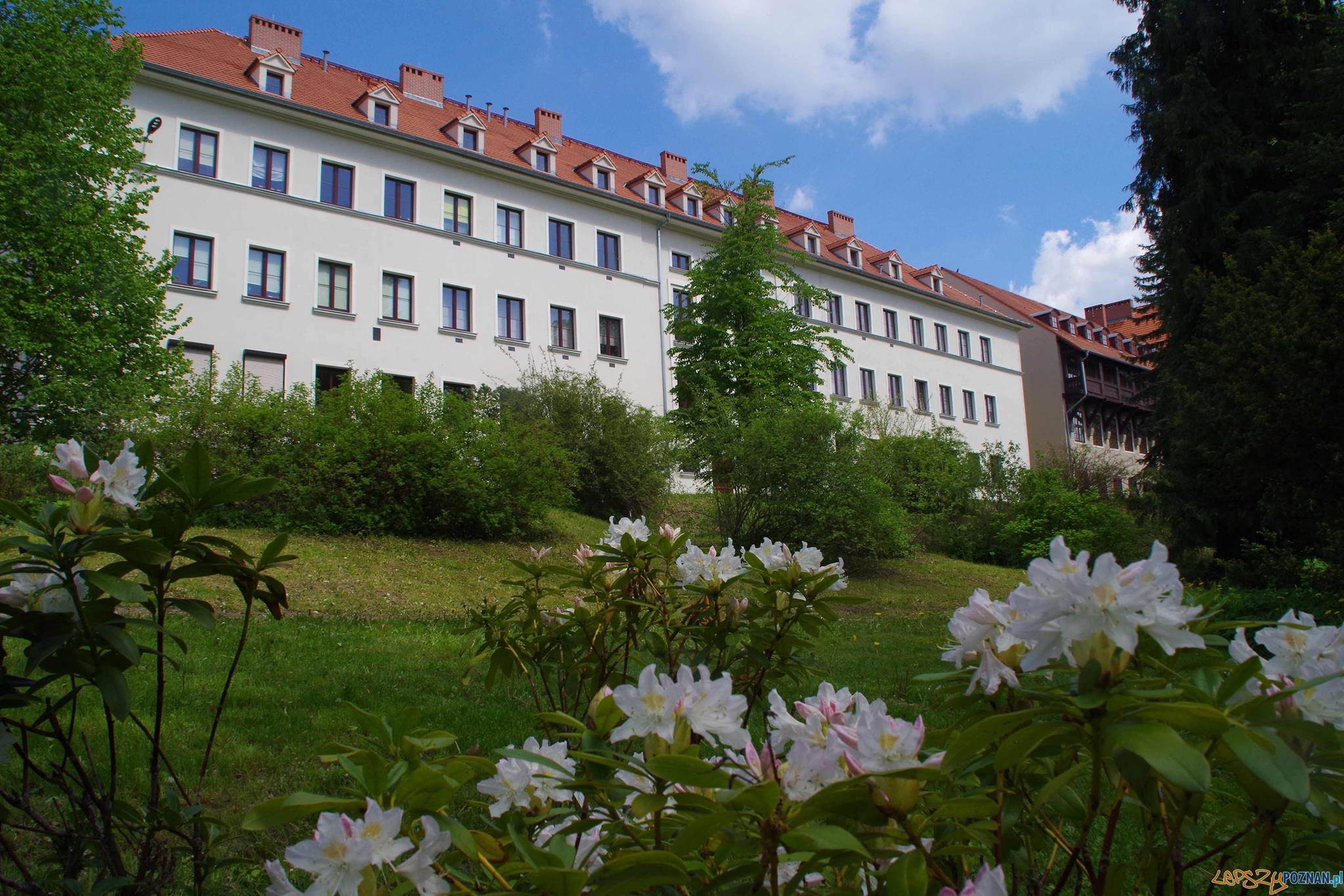 Niestachów i Golęcin - spacer z przewodnikiem  Foto: Grupa Przewodników PoPoznaniu