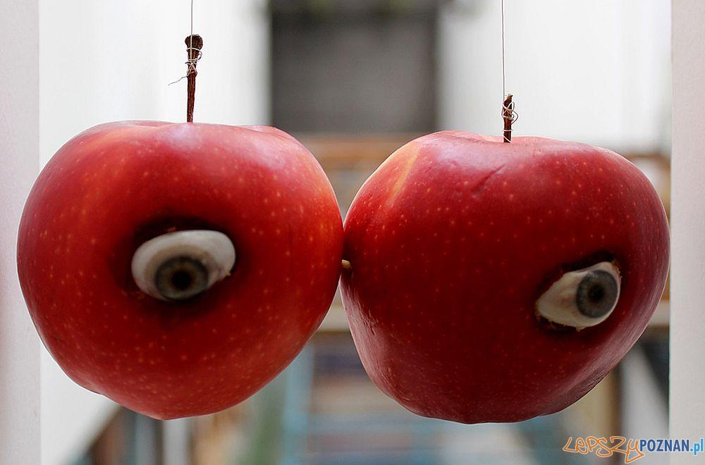 Agnieszka Grodzińska, Apple View, 2016  Foto: Galeria Rodriguez / materiały prasowe