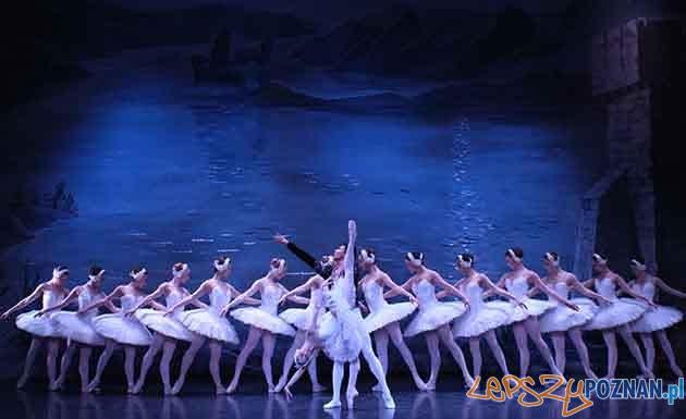 Moscow City Balet - Jezioro Łabędzie  Foto: materiały prasowe / makroconcert