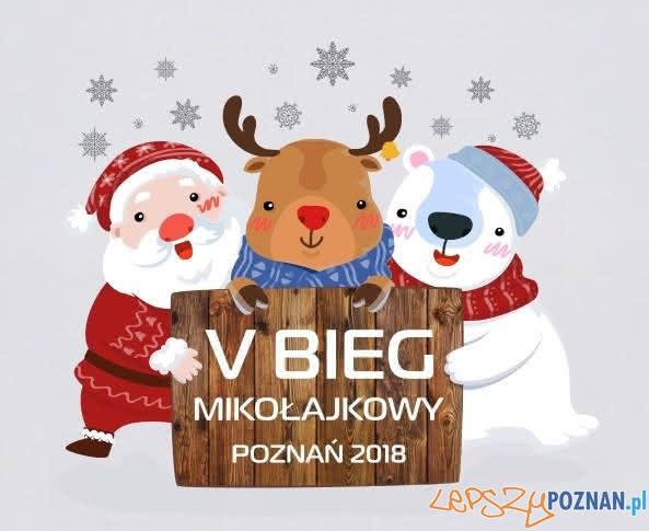 Bieg Mikolajkowy  Foto: materiały prasowe