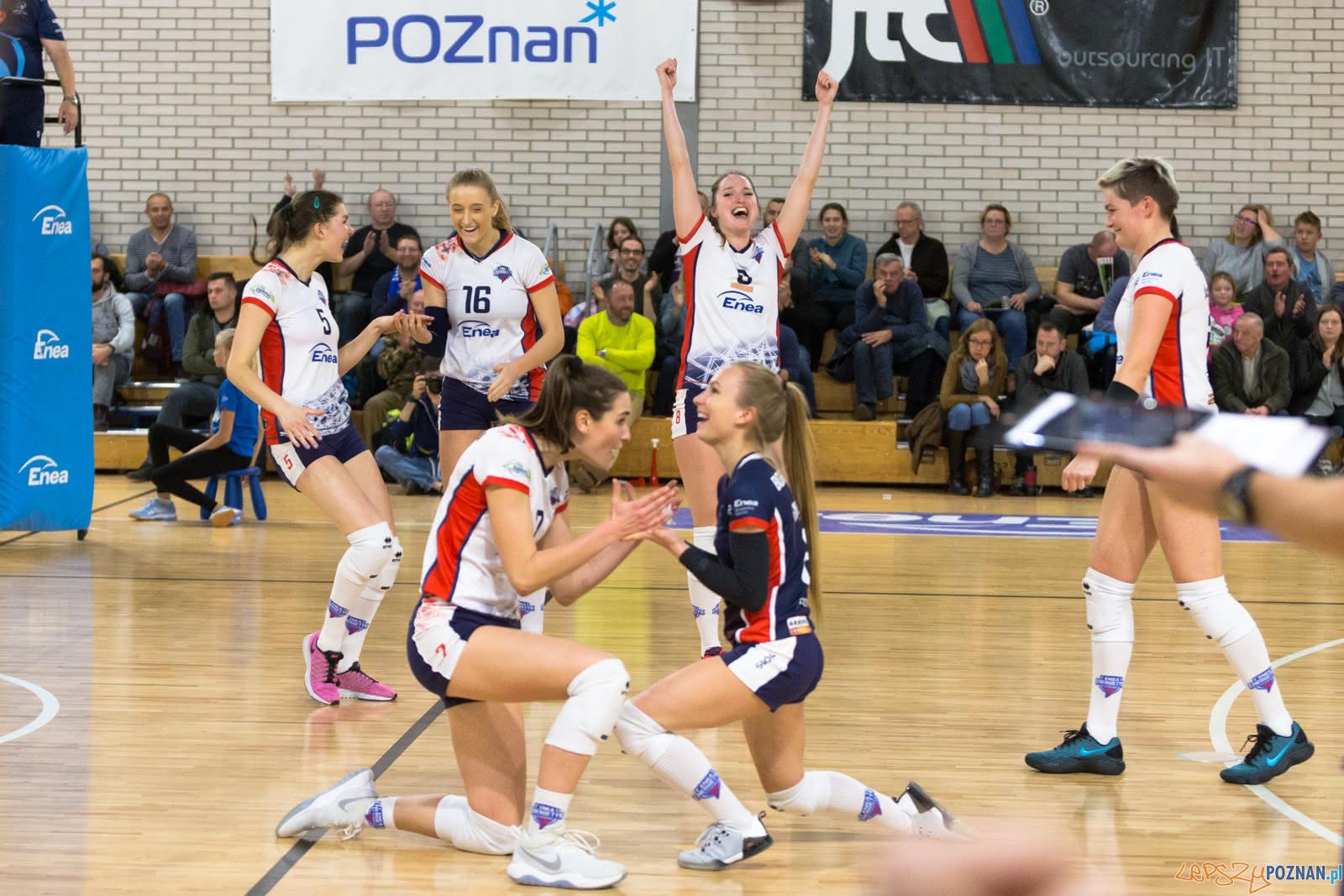 Enea Energetyk Poznań - Grupa Azoty PWSZ Tarnów  Foto: lepszyPOZNAN.pl/Piotr Rychter
