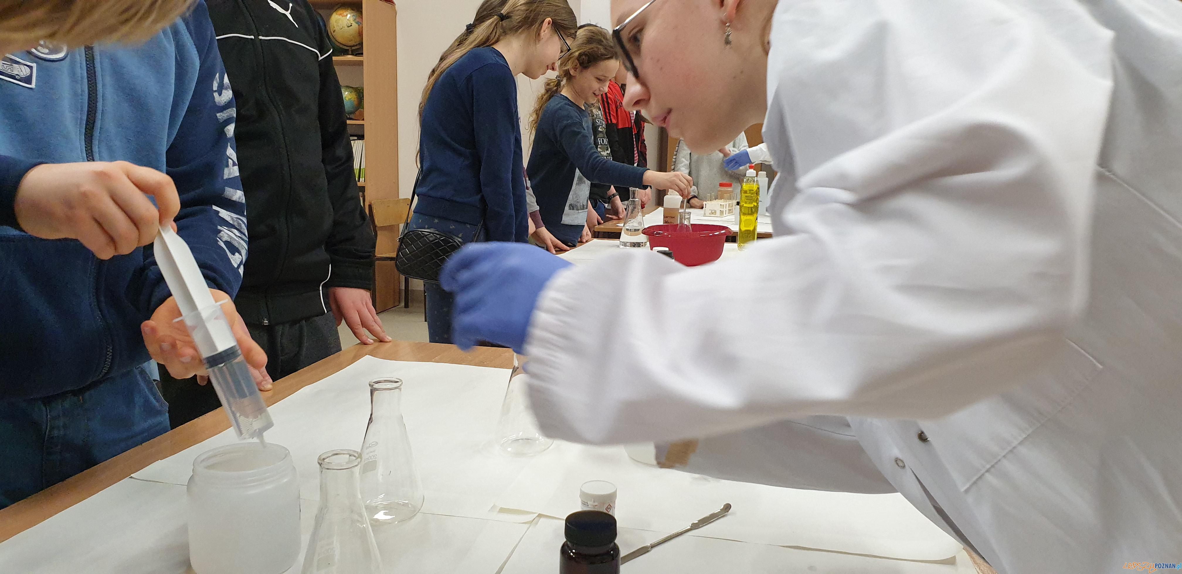 Wiosna naukowców w Antoninku  Foto: lepszyPOZNAN / tab