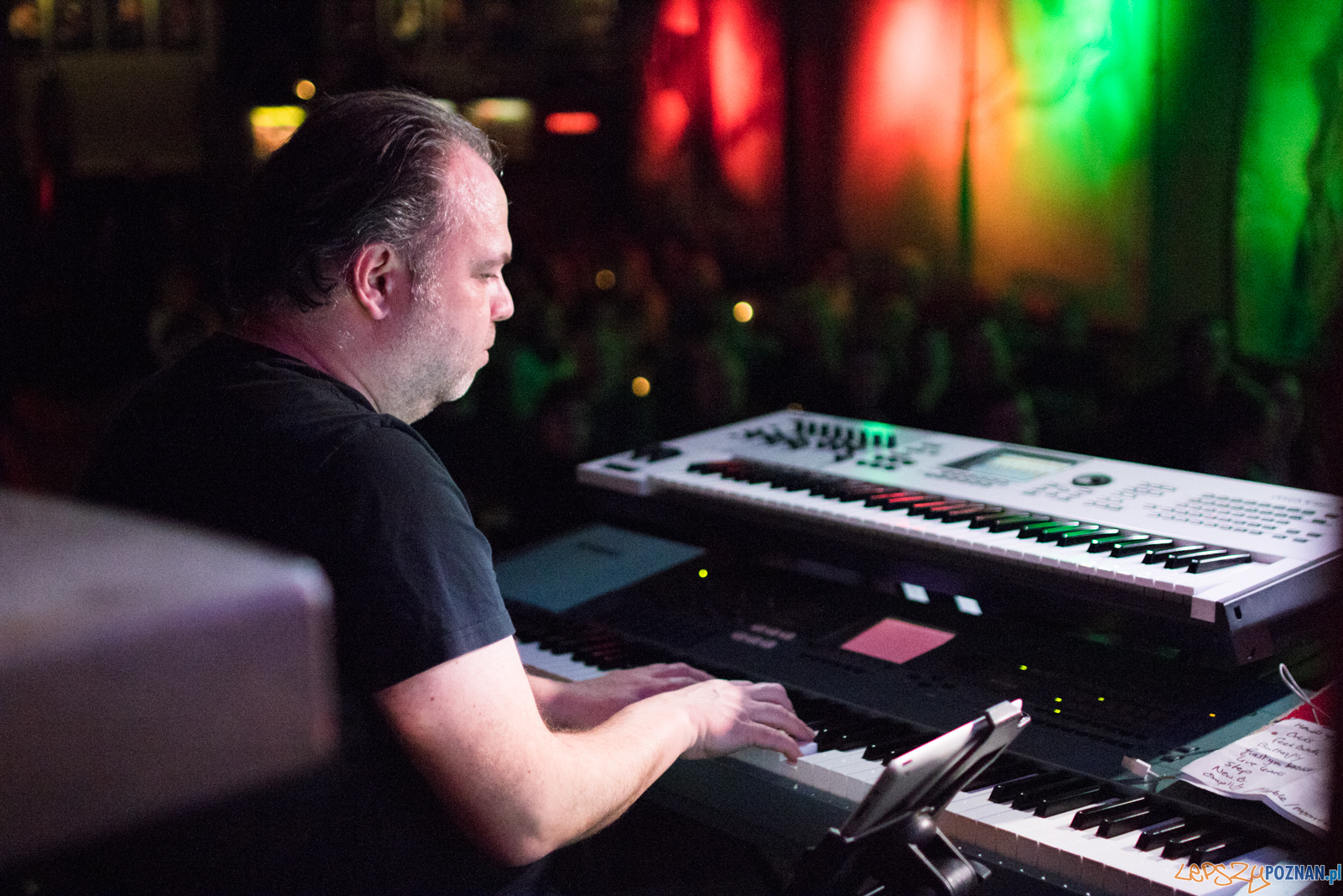 Tristan  Foto: lepszyPOZNAN.pl / Ewelina Jaśkowiak