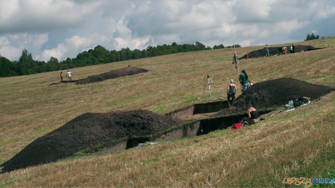 Badania archeologiczne na terenie podgrodzia w Szurpiłach  Foto: materiały prasowe Muzeum Archeologicznego
