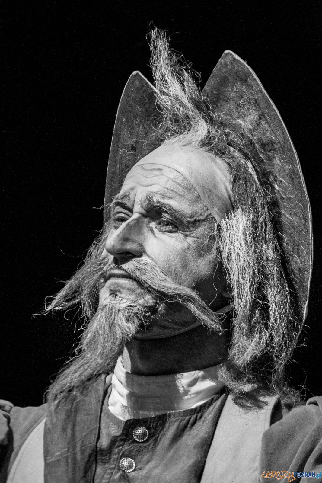 Don Kichot  Foto: lepszyPOZNAN.pl / Ewelina Jaśkowiak