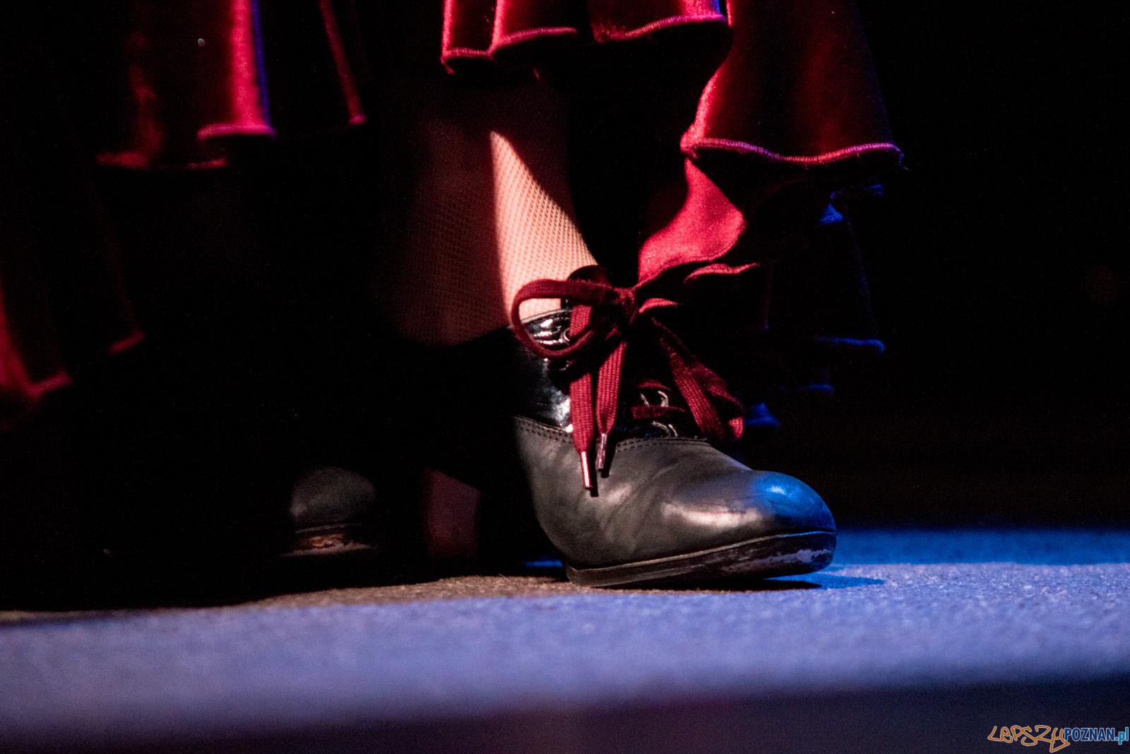 Entre Flamencos – koncert muzyki i tańca flamenco