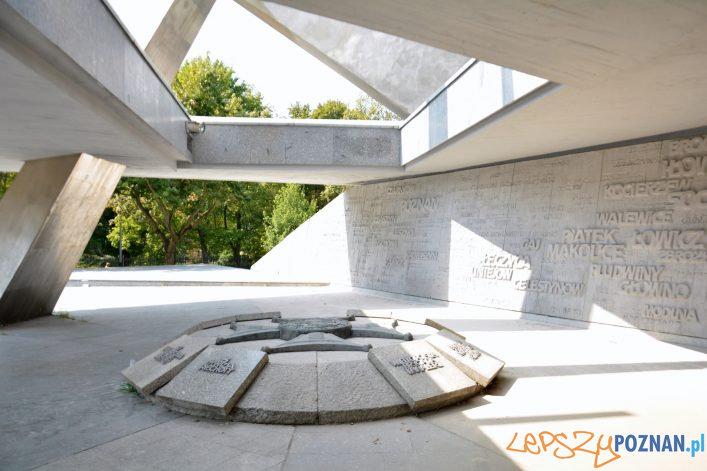 Czyszczenie pomnika Armii Poznań  Foto: