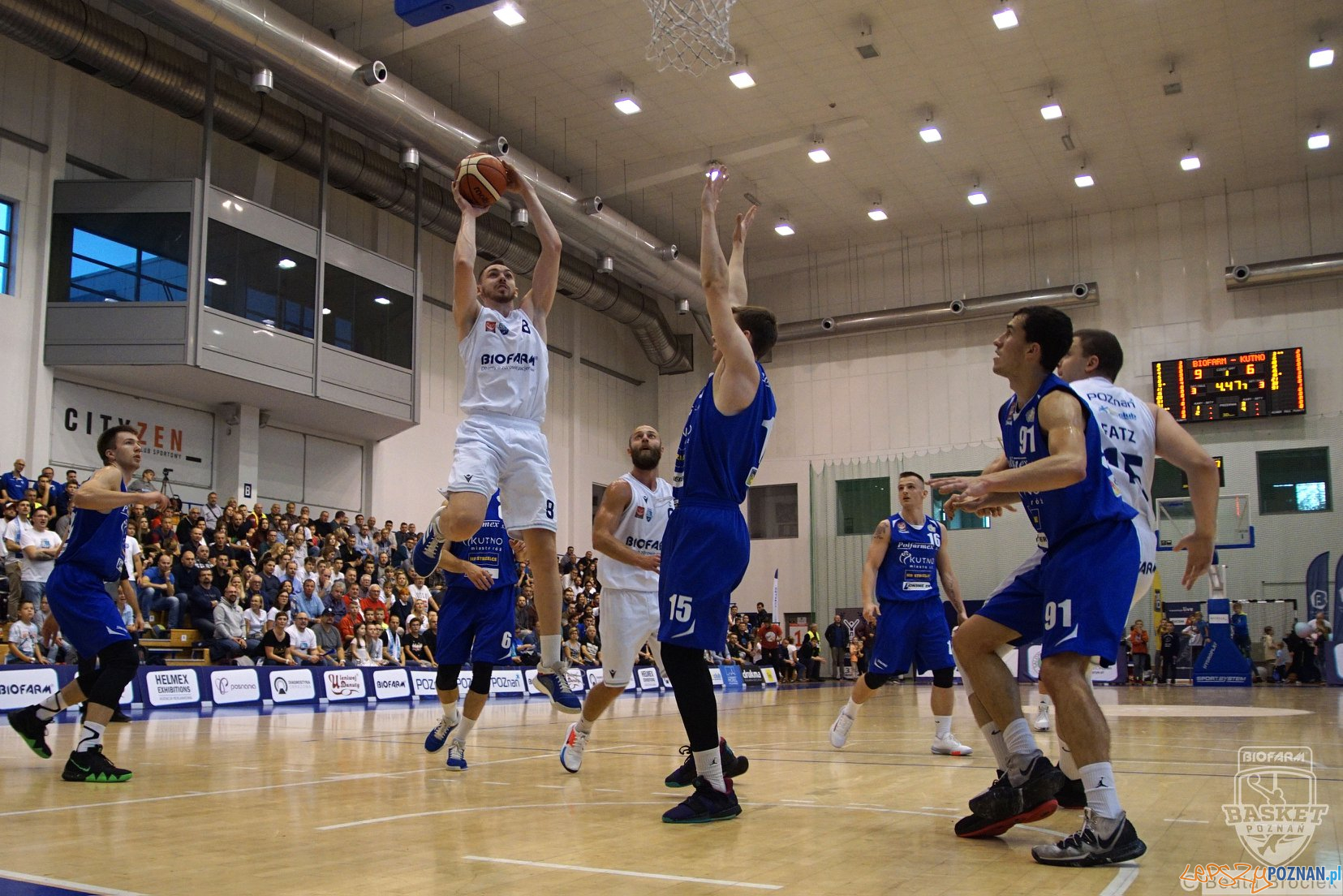 Biofarm Basket Poznan - Polfarmex Kutno  Foto: materiały prasowe / Beata Brociek