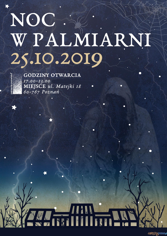 Noc w Palmiarnii  Foto: materiały prasowe