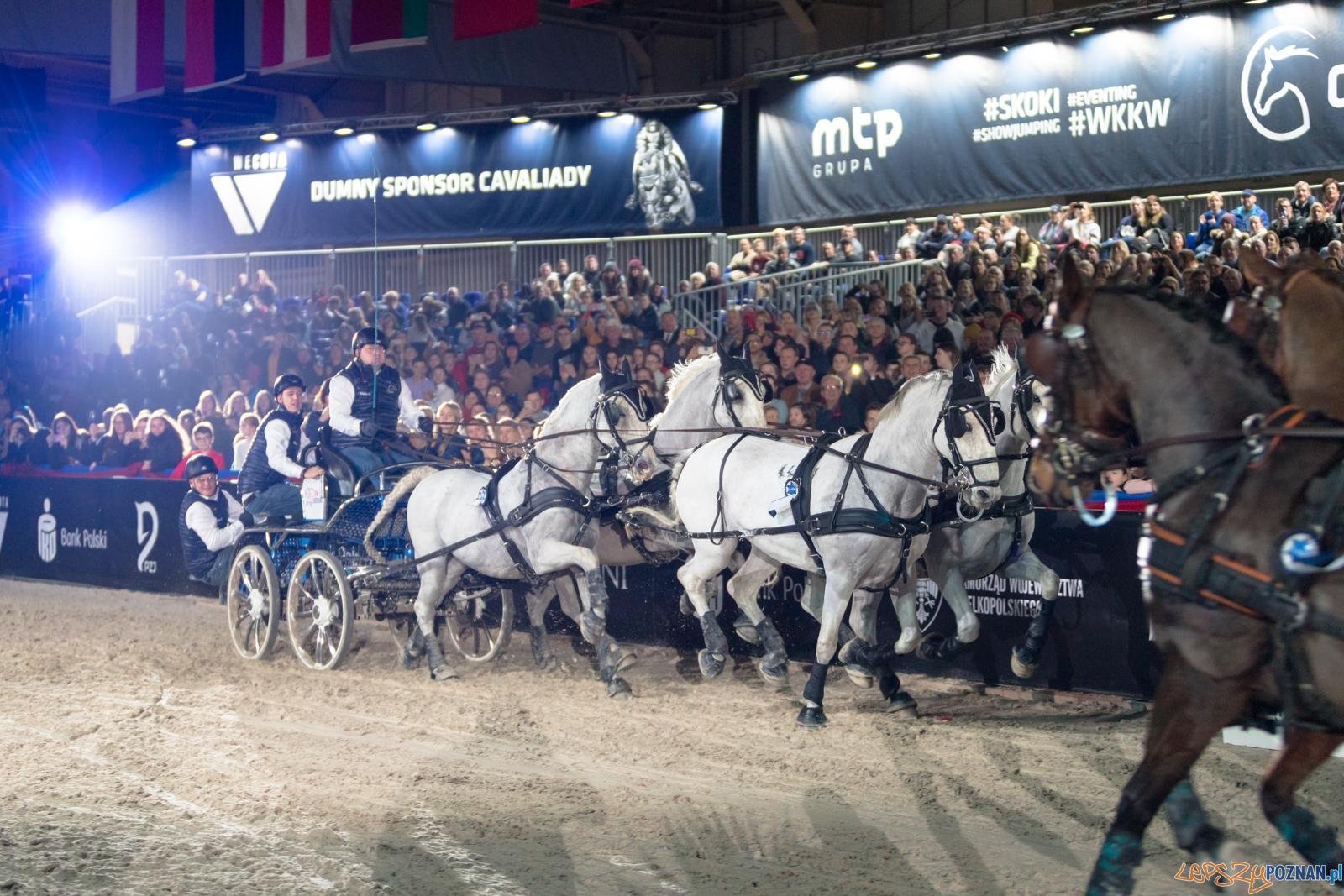 Cavaliada - Halowy Puchar Polski w Powożeniu Zaprzęgami Cztero  Foto: lepszyPOZNAN.pl/Piotr Rychter