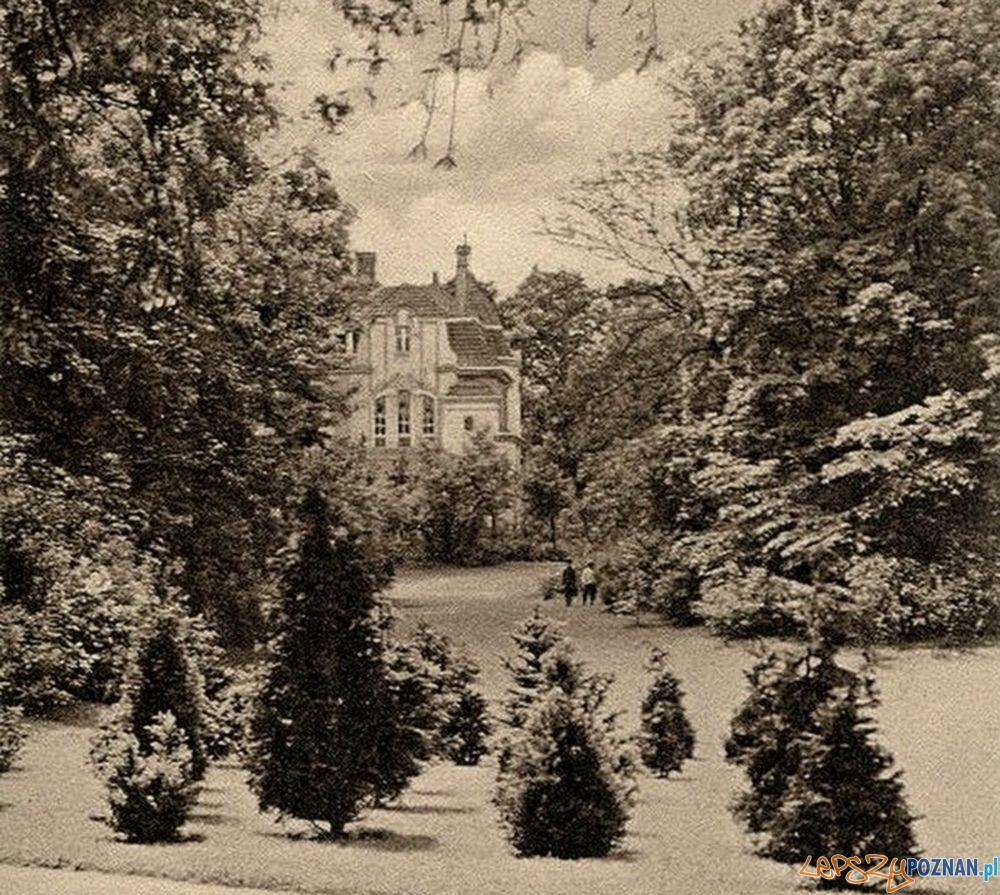 Park Goethego Moniuszki 1906  Foto: fotopolska