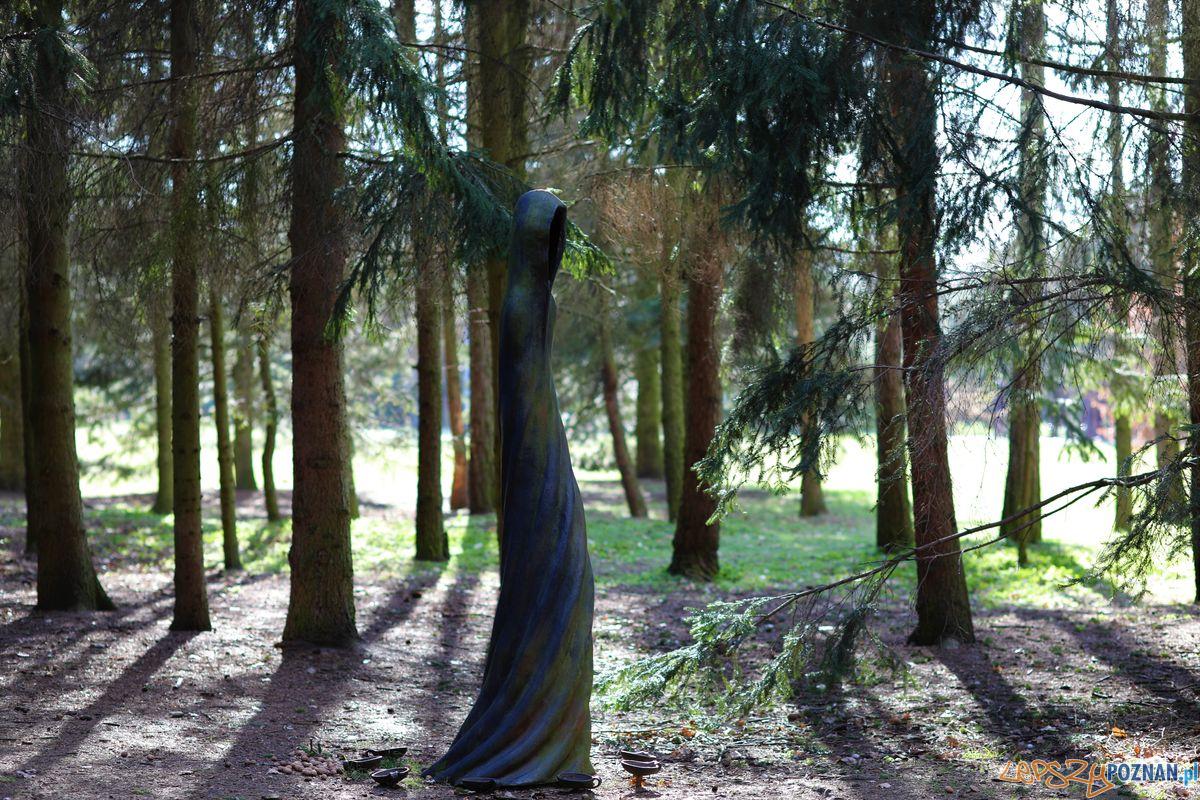Cytadela - rzeźby  Foto: Tomasz Dworek
