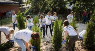 Akcja Drzewo dla działkowca pracowników Beiersdorf Poznań  Foto: mat. prasowe
