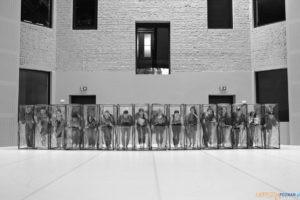Romeos 7 julias unplagued. Traumstadt  Foto: materiały prasowe / Andrzej Grabowski