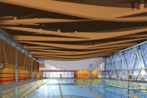 Koncepcja - wnętrze hali basenowej  Foto: